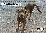 Straßenhunde 2020 (Tischkalender 2020 DIN A5 quer): Liebenswerte Straßenhunde (Monatskalender, 14 Seiten ) (CALVENDO Tiere)