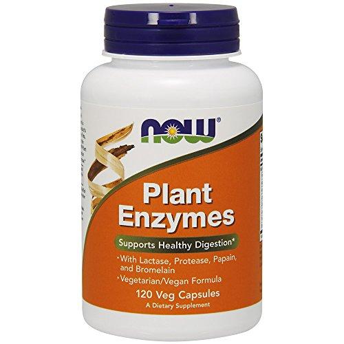Now Foods | Plant Enzymes (Pflanzliche Enzyme) | 120 Kapseln | Vegan | ohne Gentechnik | Glutenfrei | Sojafrei - Verdauungs Enzym Mischung