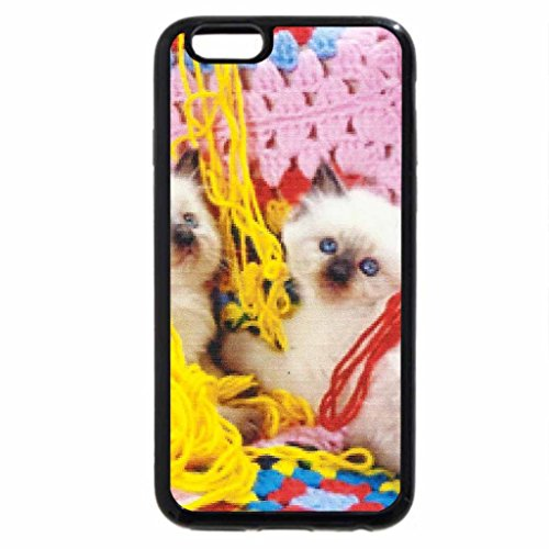 iphone-3s-iphone-6-coque-noir-un-chat-pose-sur-un-bunning