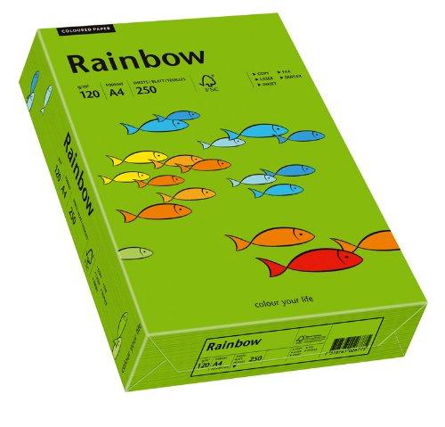 Papyrus 88042678 Drucker-/Kopierpapier farbig: Rainbow 120 g/m², A4 250 Blatt Buntpapier, matt intensivgrün -