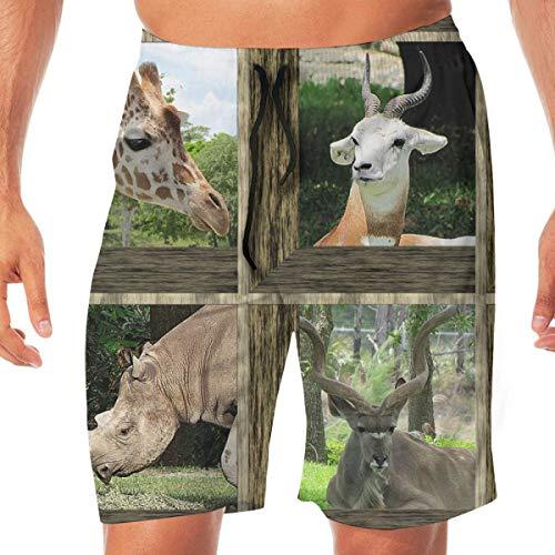 KLYDH Attic Windows at The Zoo 2_5843 Mens 3D Printed Swim Trunks Quick Dry Summer Beach Sports Running Shorts(L) (Attic Windows)