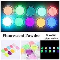 QIMEIYA 12 Colors Neon Colors Phosphorescent Luminescent Fluorescent Powder Glow In Dark Nail Decorations Nail Art Acrylic Use DIY Kit