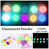 QIMEIYA 12 Colors Neon Colors Phosphorescent Luminescent Fluorescent Powder Glow In Dark Nail