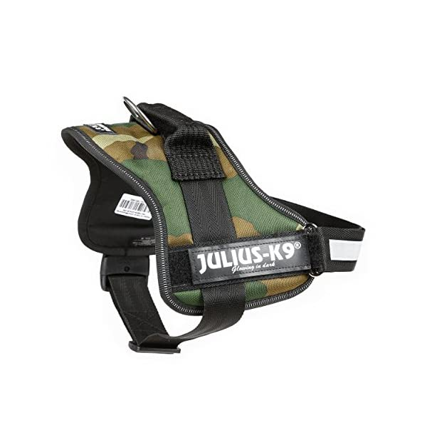 Julius-K9, 162M-BB1, Powerharness 3