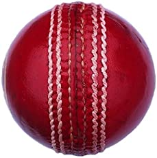 Leather Cricket Ball Red, 4 Piece Ball for Test Matchs, One-Day Matchs and Practice, High Quality by SST Sports