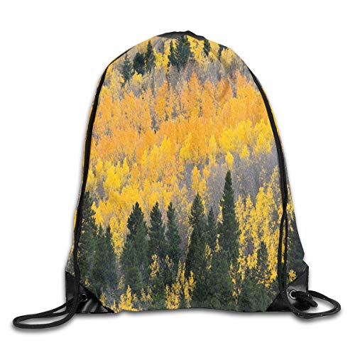 Fall Duvet Cover Set, Colorful Aspen Forest In Colorado Rocky Mountains Western Wilderness USA Theme,Green Yellow Grey_2Gym Bag -