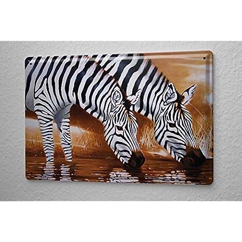 20x30 cm bebida Cartel de chapa Placa metal tin sign Arkadiusz Warminski dos estepa cebras África abrevadero
