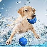 Roblue Hundespielzeug Hund Trink Kühlende Spielzeug Sommer Haustier Zahnpflege Kauspielzeug mit Loch für Wasser
