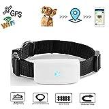 MOMAMO Haustier GPS Tracker, Hund Katze GPS Tracker mit Halsband Anti Verlorene GPS Ortung Echtzeit GPS Tracking Locator Hundehalsband Training GPS Outdoor Navigation mit Free APP