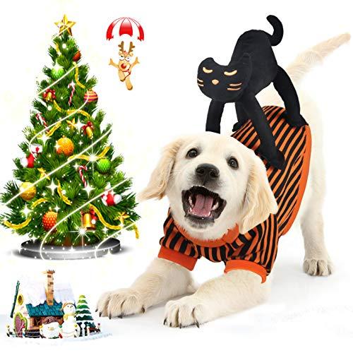 Idepet Cappottino Cane Natale, Vestiti Cane Piccola Taglia per Animale Domestico Cane Gatto per Natale Halloween Festa Arancia Nero