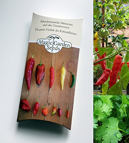 Salsa-topf (Saatgut Set: 'Mexikanische Salsa', 3 authentische Zutaten für den scharfen Dip als Samen zur Anzucht in schöner Geschenk-Verpackung)