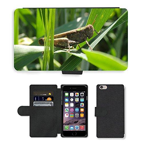 Just Mobile pour Hot Style Téléphone portable étui portefeuille en cuir PU avec fente pour carte//m00138245Cricket Animal Nature insectes Bug//Apple iPhone 6Plus 14cm