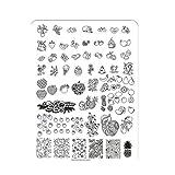 Xshuai Qualität 14.5 * 9.5cm DIY Nagel-Kunst-Bild-Stempel, das Muster-Platten-Maniküre-Schablone stempelt (C)