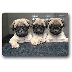 """doubee Animales Pug Felpudo (Premium Felpudo rectangular antideslizante Felpudo al aire libre interior 60cm x 40cm, tela, D, 23.6""""x15.7"""""""