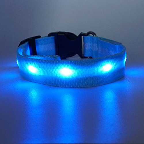 Poketech LED Sicherheitshalsband LED-Leuchthalsband für Hunde M, Blau