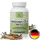 Cordyceps Sinensis 120 Kapseln • hochdosiert 500mg • CS-4 Extrakt aus dem chinesischen Raupenpilz • vegan • Hergestellt in Deutschland