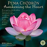 Pema Chodron 2019 Calendar: Awakening the Heart - a Year of Inspirational Quotes