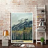 Poster,Banff National Park Landscape Posters and Prints,Canada Foggy Mountains Forest Photography,Home Wall Art Decor Canvas Painting 16X20Inch(40X50Cm)