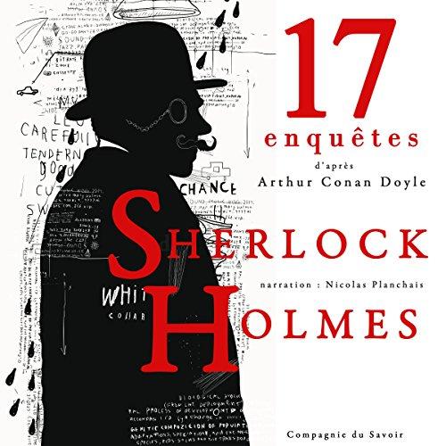 17 nouvelles enquêtes de Sherlock Holmes et du Dr Watson (Les enquêtes de Sherlock Holmes et du Dr Watson : Collection)