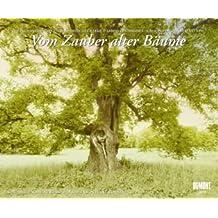 Vom Zauber alter Bäume, Fotokunst-Kalender 2011