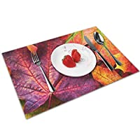QCFW Placemats Place Mats Sets of 4 Table Mats PVC Washable Mat Heat Resistant Mat for Kitchen Garden BBQ Outdoor Colourful Autumn Leaves