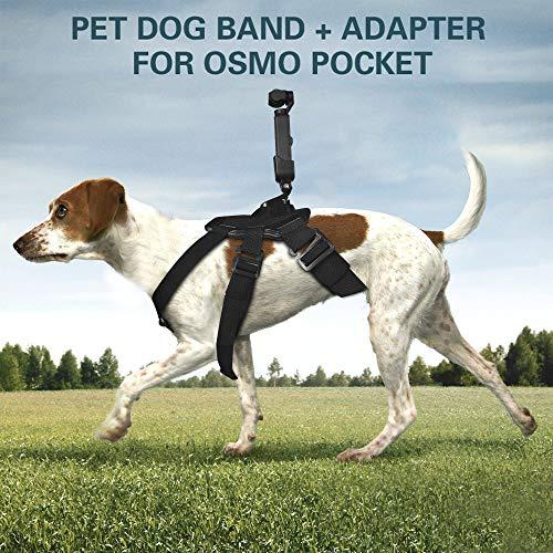 Asinig Cablaggio Cane Regolabile per Action Cameras Camera cardanica Pet Dog Fascia Toracica Cintura per DJI OSMO Pocket & GOPRO (Nero)