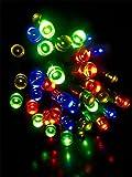 #7: Blackberry Overseas 25 Metre Long Multi Colored Decorative LED Lights