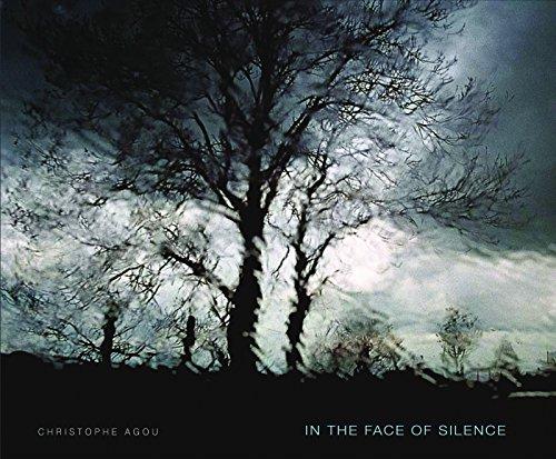 In the Face of Silence por Christophe Agou