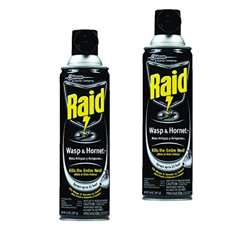 wasp-hornet-killer-14-oz-aerosol-can-pack-of-2