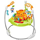 Fisher-Price Jumperoo Baby Bouncer