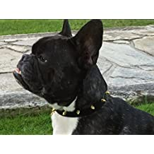Collar para perro grande, mediano y pequeño en cuero de la colección de lujo CAMDEN TOWN PUNK, son ideales para todo tipo de razas (galgo, salchicha…) piel de vacuno europeo plena flor y latón dorado.