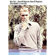 David Bowie: Beruf: Popstar