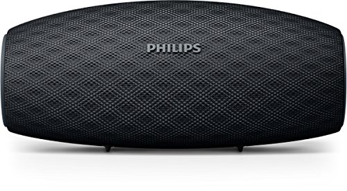 Philips Ever Play BT6900B/00 Active Bluetooth Speaker (Black)
