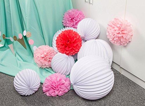 SUNBEAUTY 11er Set Rosa Pink Weiß PomPoms Lampions Zeremonie Dekoration (Rosa & Pink & Weiß) - 3