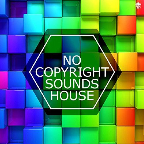 No Copyright Sounds House