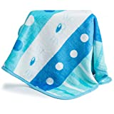 Allisandro Multi Usage Portable Outdoor Waterproof Blanket Picnic Camping Blanket Beach Mat for Dogs and Cat With Storage Bag BLACK