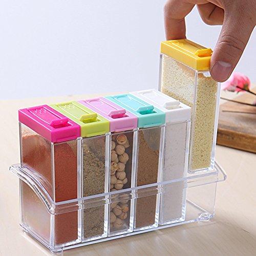 Gewürzdosen Set mit 6 Teilen aus Kunststoff mit dem Aufbewahrungsregal Accessoires für Küche, Farben Zufalls Spice Jar Set Speisewürze Essig Flasche (Transparent)