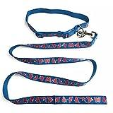 Bunte Nylon Hundeleine und Halsband Set Verstellbare Führleine Welpenleine Trainingsleine und Hundehalsband für kleine große Hunde Blau Schmetterlings Muster
