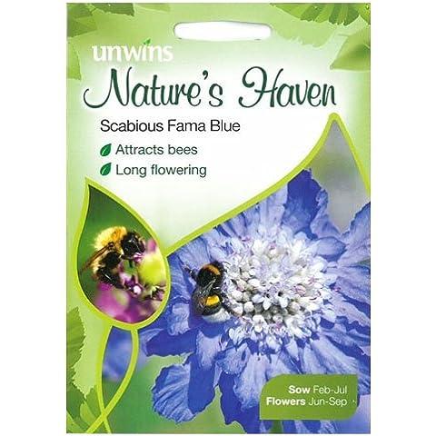 Unwins Flores Silvestres Semillas Escabiosa Fama Azul