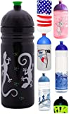 ISYbe Trinkflasche 700ml Gekko, schadstofffrei, spülmaschinengeeignet, auslaufsicher