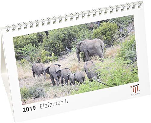 Elefanten II 2019 - Timokrates Tischkalender, Bilderkalender, Fotokalender - DIN A5 (21...