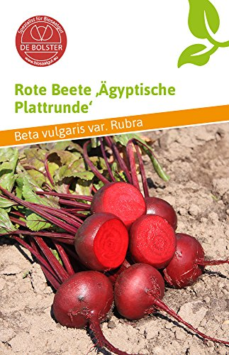 De Bolster 11040 Rote Beete Ägyptische Plattrunde (Bio-Rote Beetesamen) [MHD 01/2020]