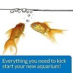 API AQUARIUM START UP PACK Water Conditioner 37 ml Bottle 2-Pack 11