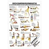Beckenbodengymnastik Mini-Poster Anatomie 34x24 cm medizinische Lehrmittel