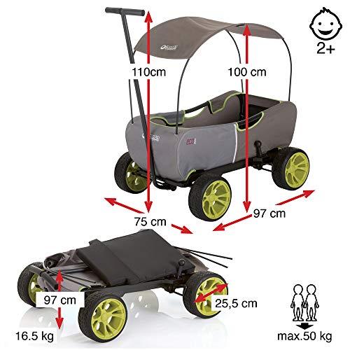 51U0UqdHtrL - Hauck - Carro Eco móvil para niños de 2 - 6 años, Color Verde (T93108)