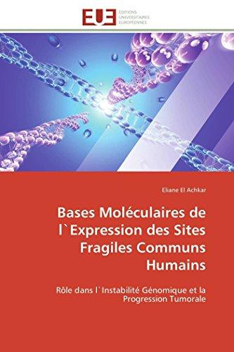 Bases moléculaires de l`expression des sites fragiles communs humains