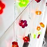 30er LED Lichterkette Blumen bunt Deko Innen batteriebetrieben
