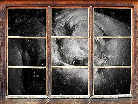 Hommes et femmes Lion effet de charbon câlin Fenêtre en