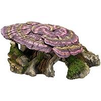 Nobby - Tronco de árbol de madera con seta para adornos de acuario, 28x 17x 11,5cm