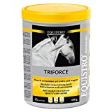 Equistro Triforce Powder 600g for Horses